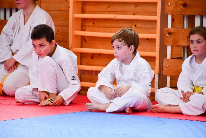 Karate opleiding royalty-vrije stock afbeeldingen
