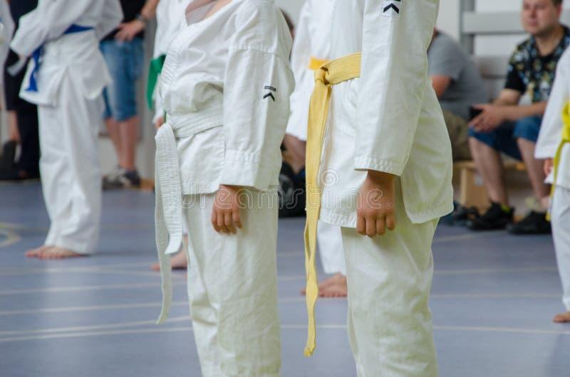 Karate opleiding De jonge geitjes blijven recht en wachten op exerc stock fotografie