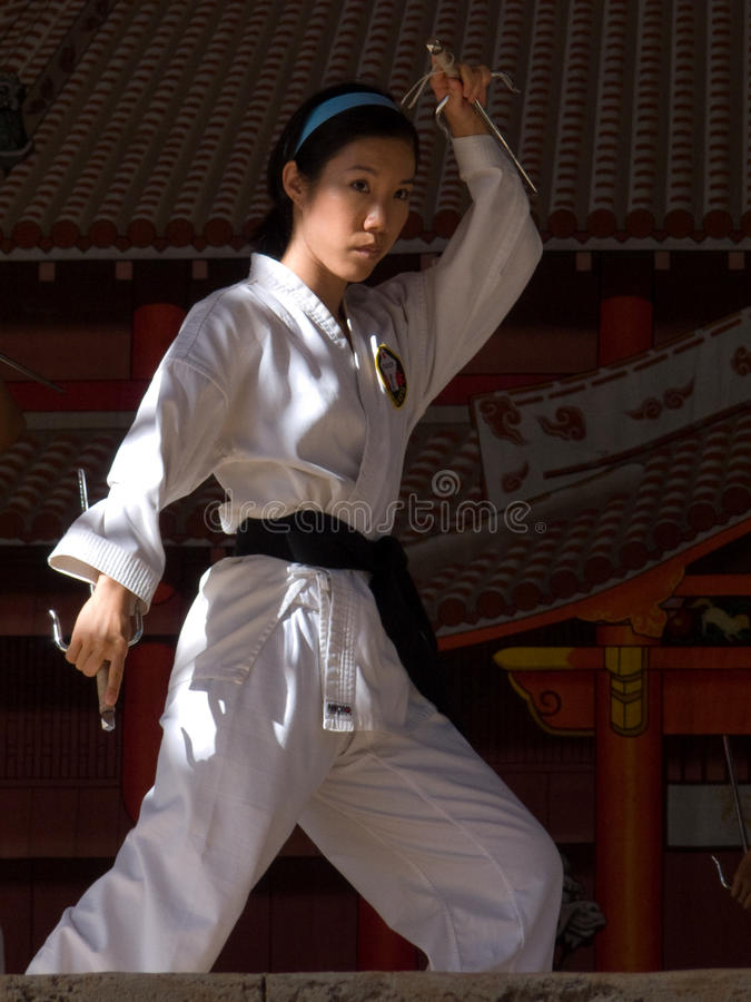Free Karate Pose Royalty Free Stock Photography - 15934577