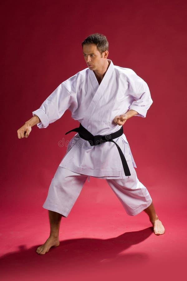 Karate Pose. Man striking a Karate pose wearing a Gi (Karate uniform) and black belt stock image