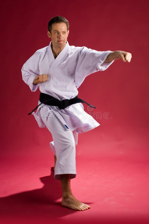 Karate Punch. A Model in a Karate Kimono with black belt(level) in a punching stance, on a red background royalty free stock images