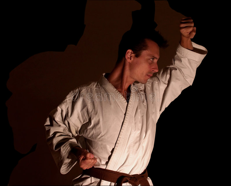 Download Karate/Shadow Partner stock image. Image of determination - 250807