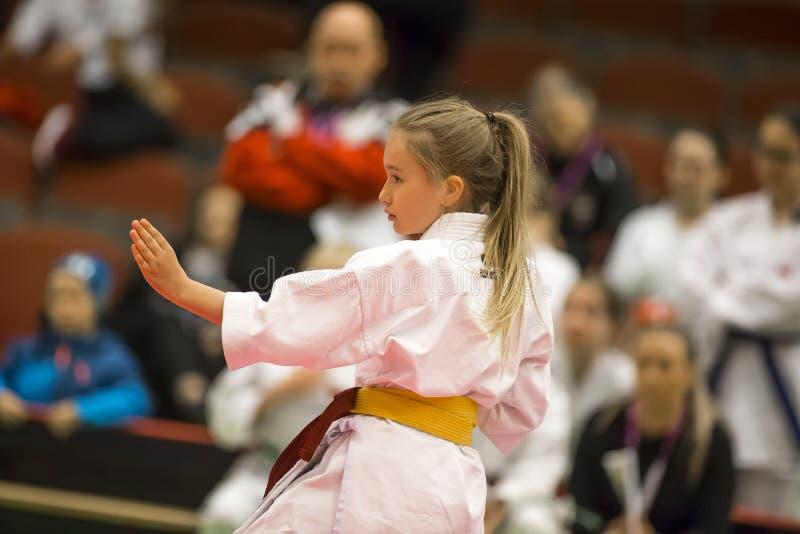 Karate Shotokan Kata Tournament fotografering för bildbyråer