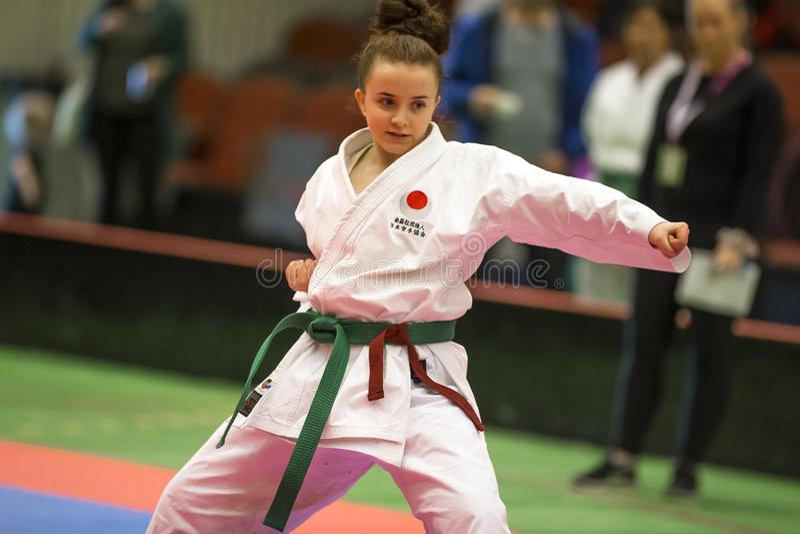 Karate Shotokan Kata Tournament royaltyfri bild