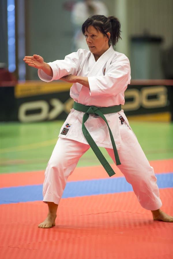 Karate Shotokan Kata Tournament arkivbild