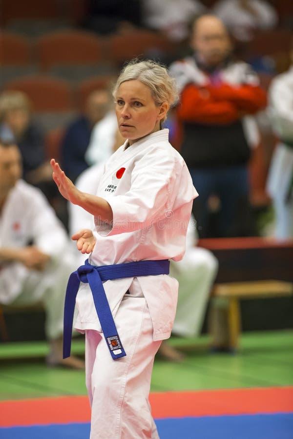 Karate Shotokan Kata Tournament arkivfoto