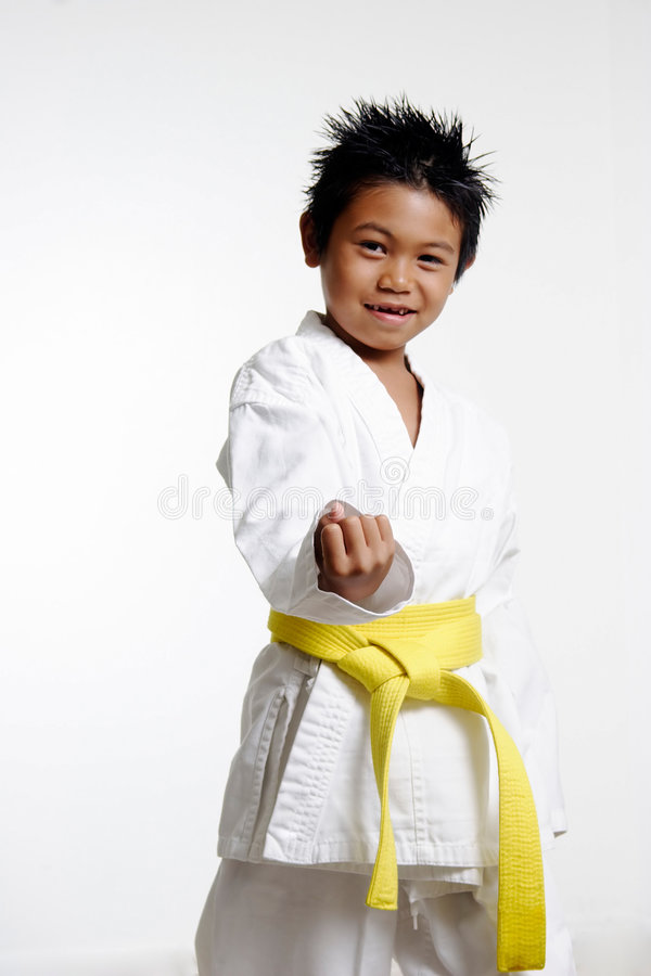 Karate Stance royalty free stock photos