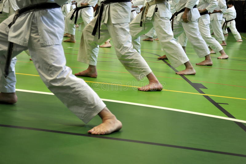 Download Karate stance stock image. Image of exercise, arts, sport - 25450651