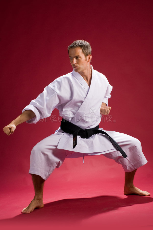 Karate stance royalty free stock image