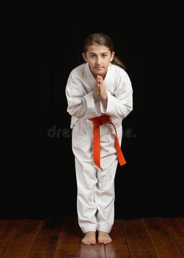 Download Karate student stock image. Image of karate, learn, kimono - 18503889