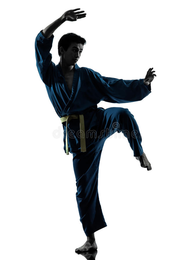 Download Karate Vietvodao Martial Arts Man Silhouette Royalty Free Stock Images - Image: 28000359
