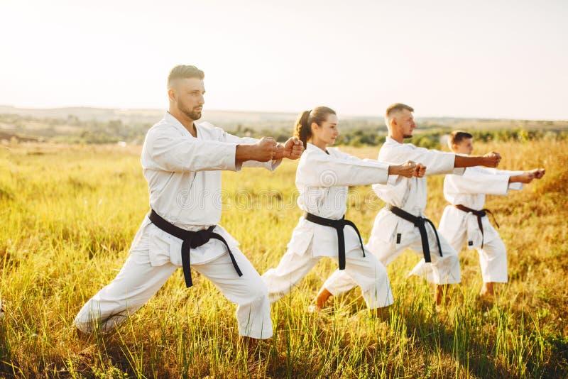 Karategrupp med förlagen i den vita kimonot arkivfoto