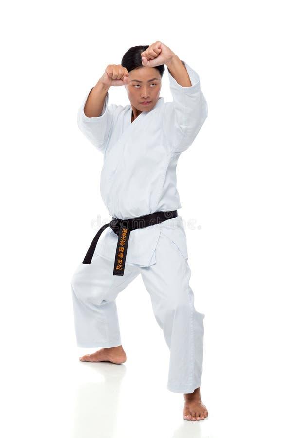 Karateinstructeur royalty-vrije stock foto