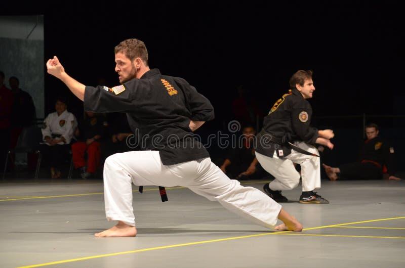 Karateinstructeurs het presteren royalty-vrije stock afbeeldingen
