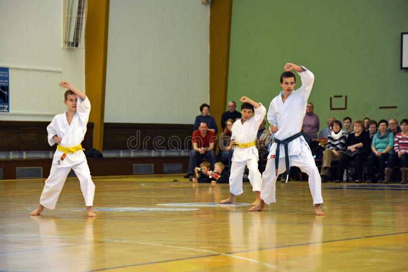 Karatejonge geitjes stock foto's