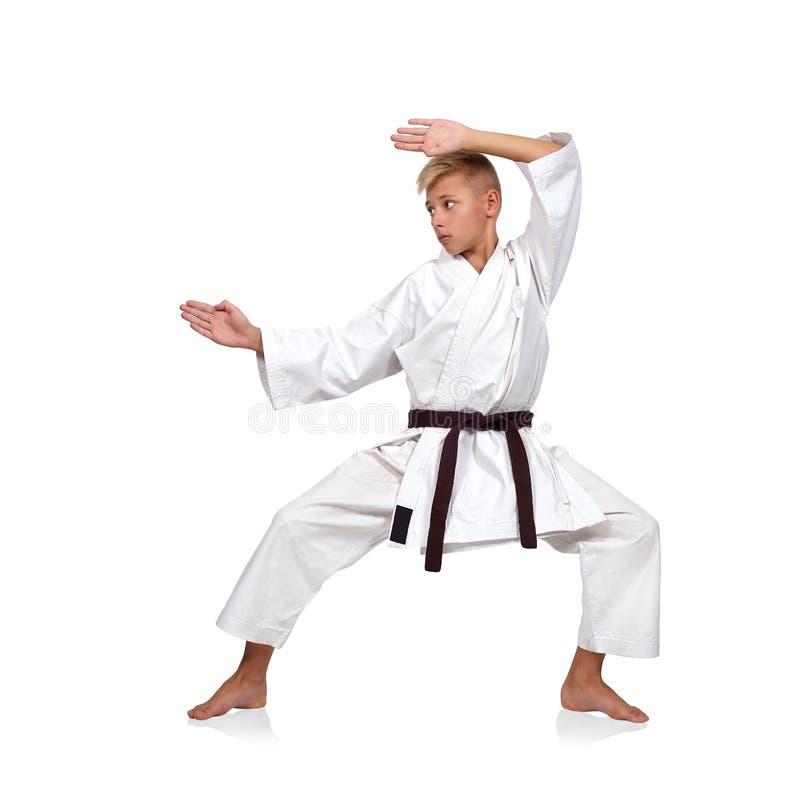 Karatejungenaufstellung stockbild