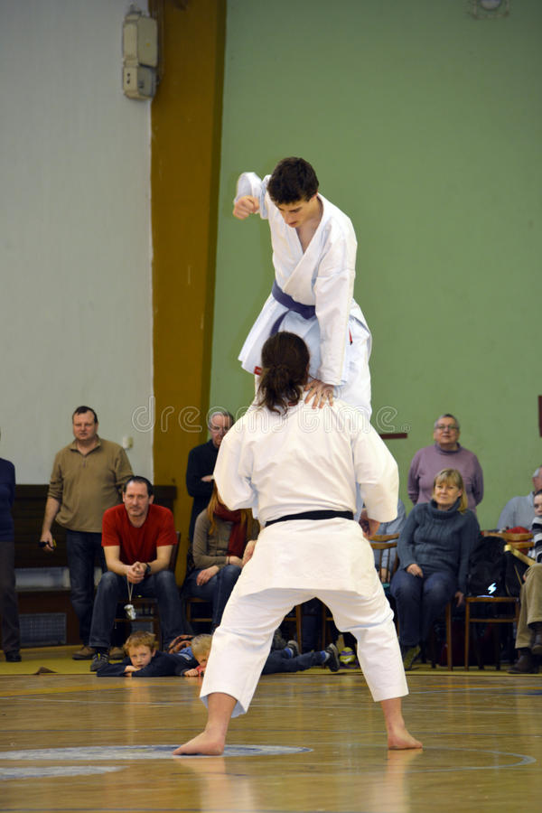 Karatekämpe som stansar mannen i huvud royaltyfria bilder