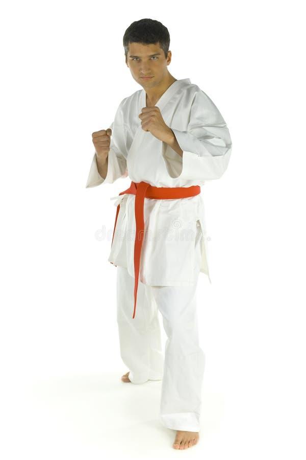 Karatekämpfer lizenzfreies stockbild