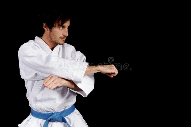 karateka obrazy stock