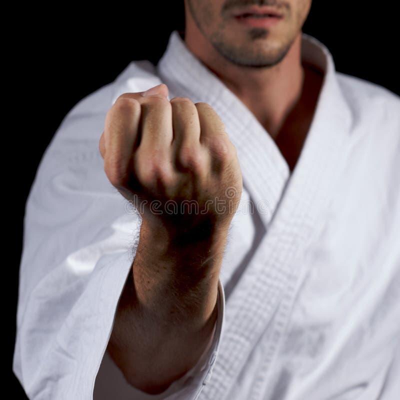 karateka 免版税库存图片