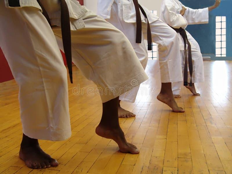 karatekata arkivbilder