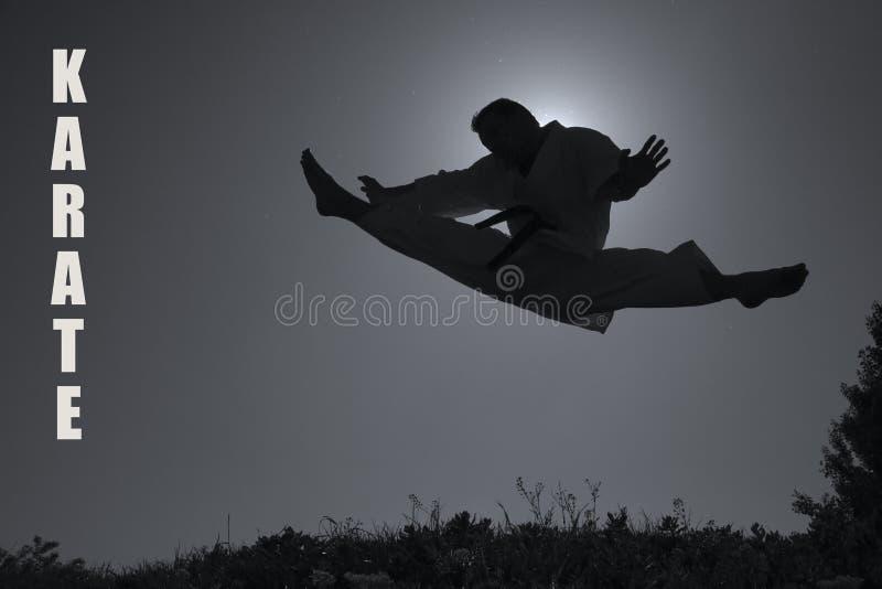 karatekickman royaltyfri bild