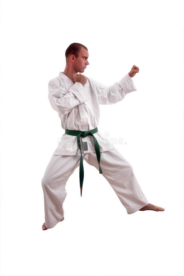 karateman royaltyfria bilder