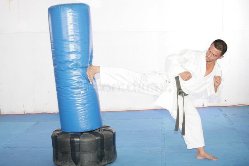 Karateman för svart bälte som öva i en sandsäck royaltyfria foton