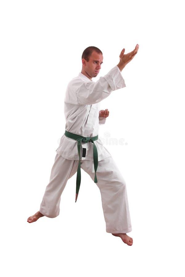 Karatemann stockfotos