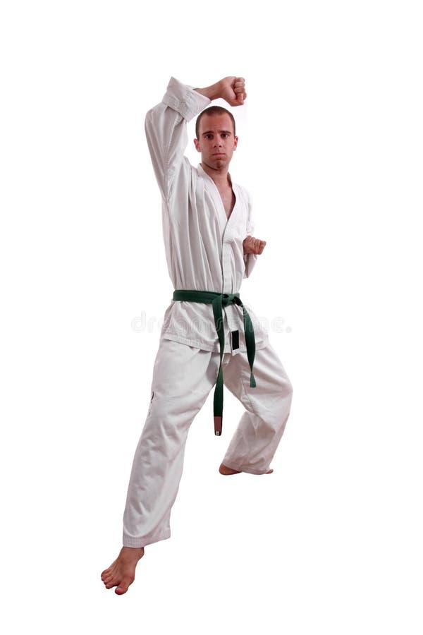 Karatemann lizenzfreie stockfotos