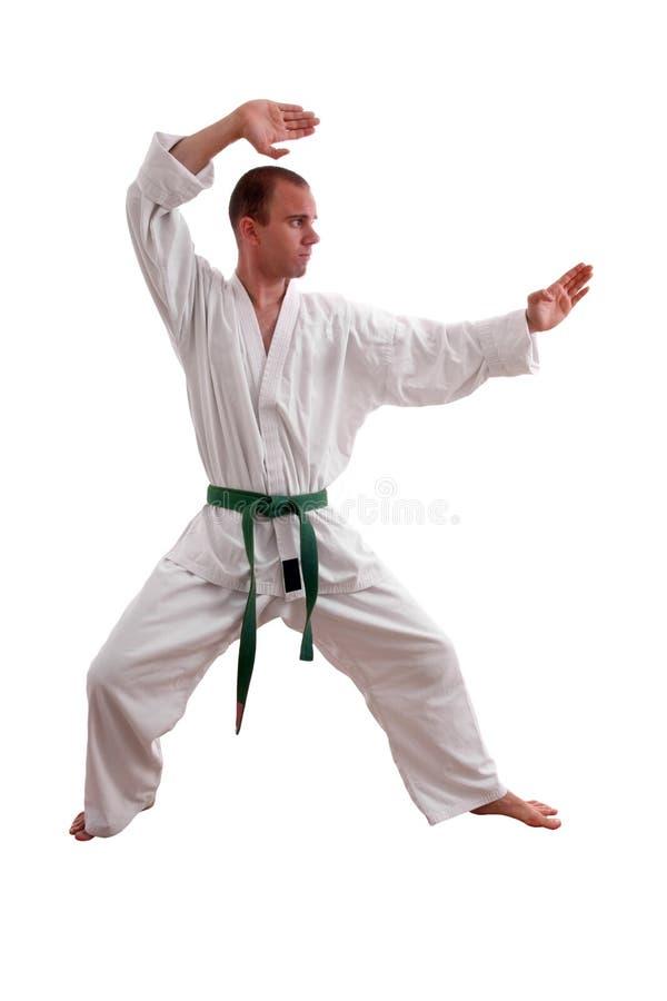 Karatemann stockfoto