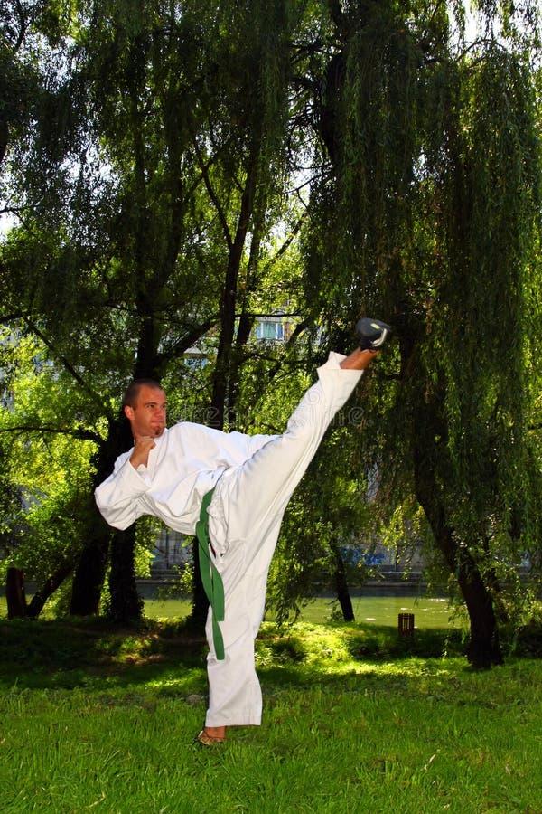 Karatemann stockfotografie