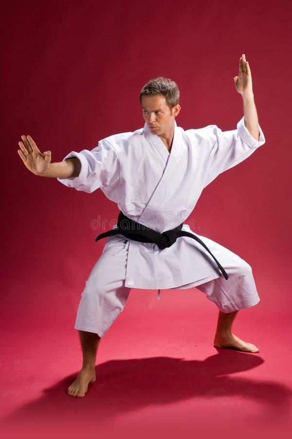 Karatemann stockbilder