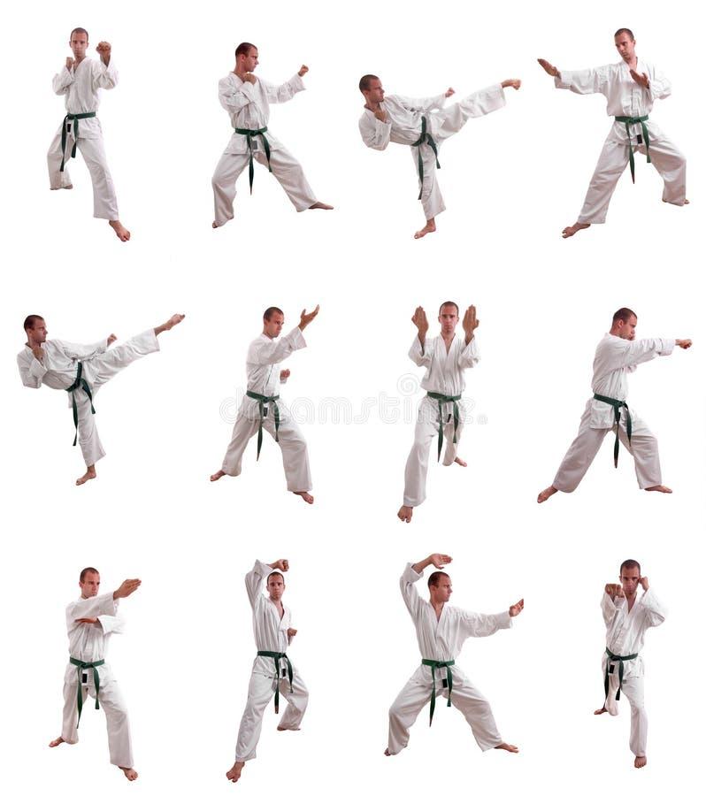 Karatemanncollage stockbilder
