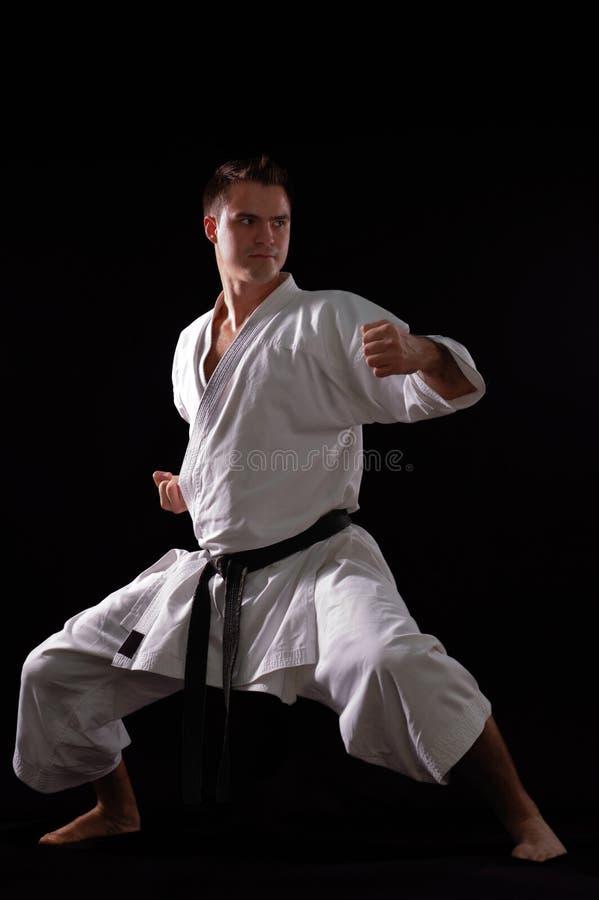Karatemannmeister der Welt lizenzfreie stockfotografie