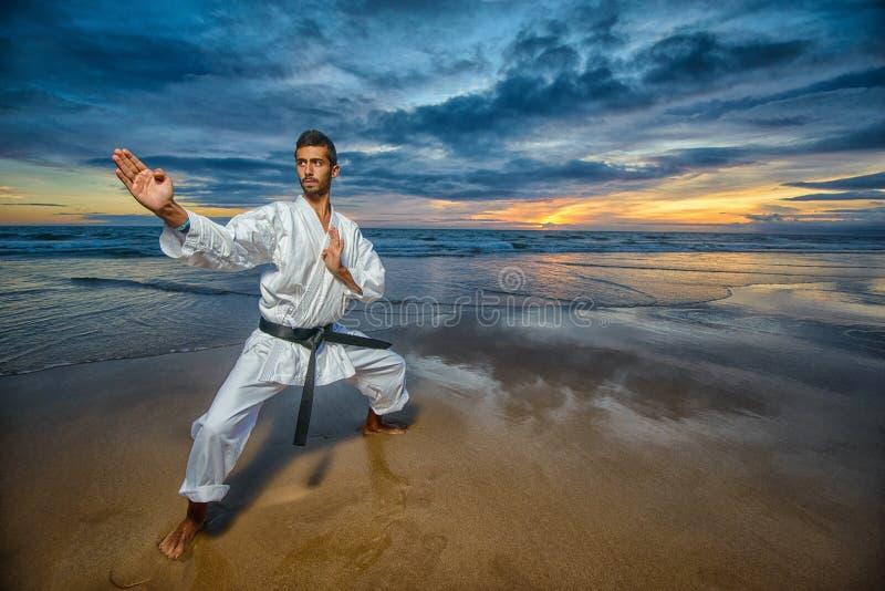 Karatemeester in defensiepositie stock foto