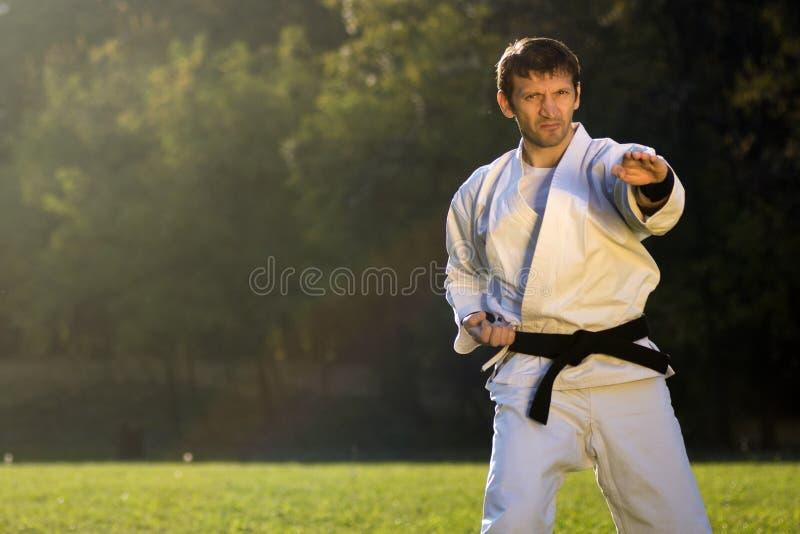 Karatemeester in openlucht stock foto's