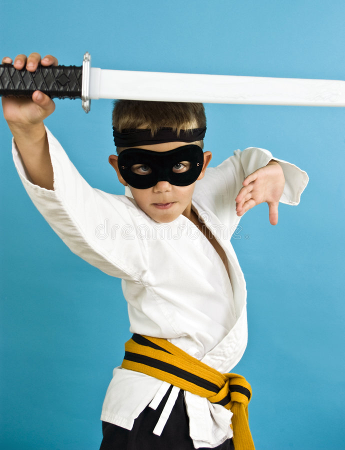 karateninja arkivbilder