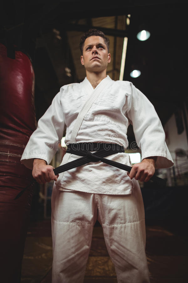 Karatespieler, der seinen Gurt bindet lizenzfreie stockfotos