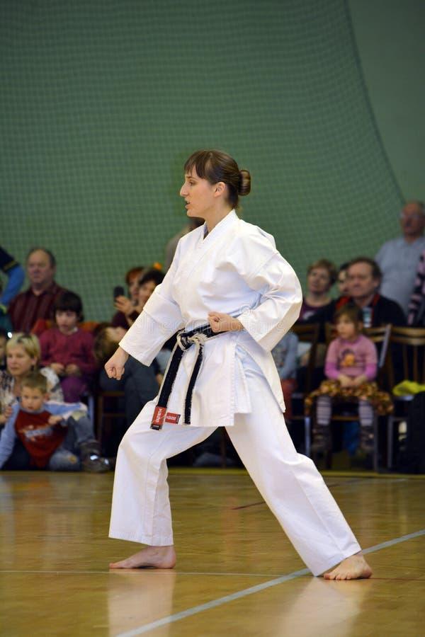 Karatevrouw stock fotografie