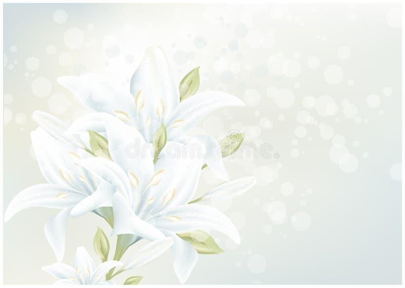 karciana kwiecista leluja obrazy stock