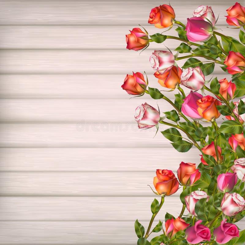 karcianego powitania ilustracyjny róż wektor 10 eps ilustracji
