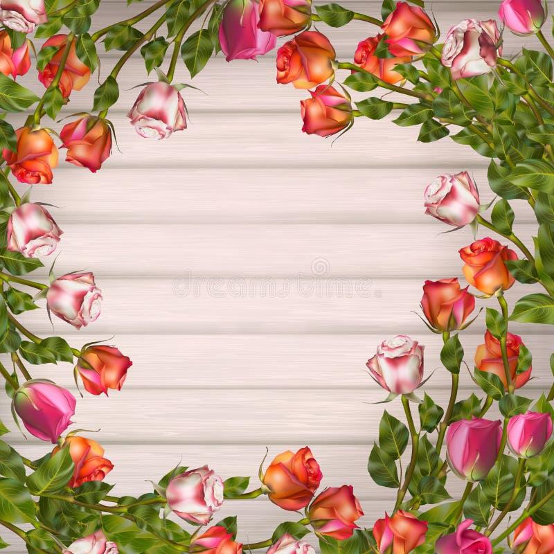 karcianego powitania ilustracyjny róż wektor 10 eps royalty ilustracja