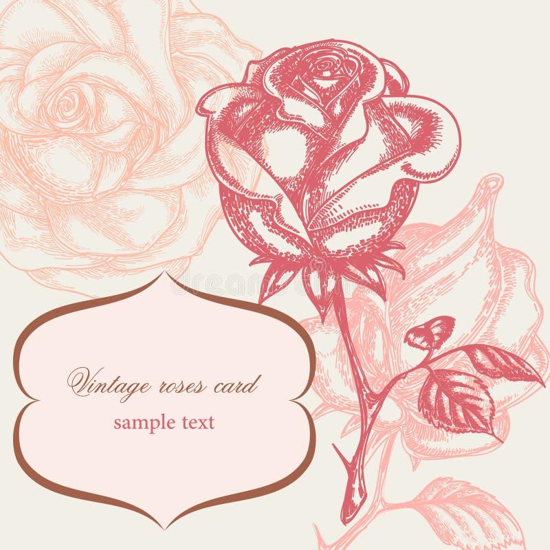karciany powitania róż rocznik ilustracja wektor
