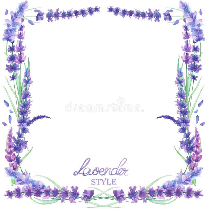 Karciany szablon, ramy granica z akwarela lawendowymi kwiatami, ślubny zaproszenie ilustracja wektor