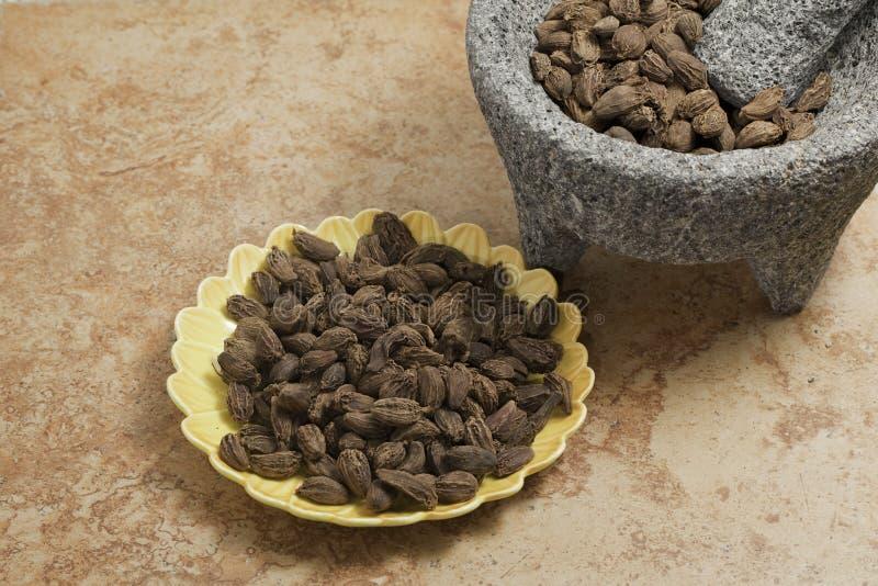 Kardamompflanze sät Schwarzes. lizenzfreie stockfotografie