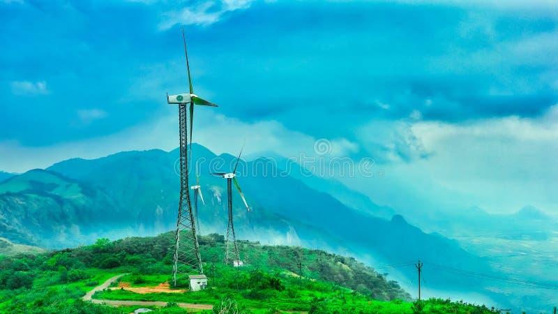 Kardamon?w wzg?rza Kerala obraz royalty free
