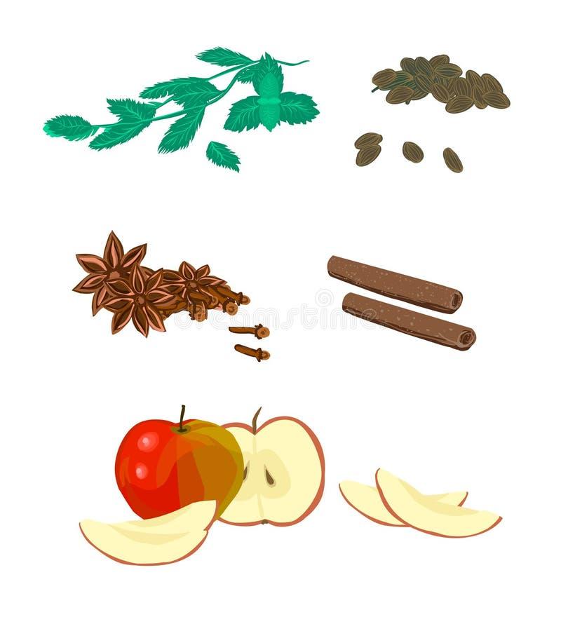 Kardamon, mennica, jabłko pokrajać, cynamon i cloves, - ustawia, zbiera, royalty ilustracja