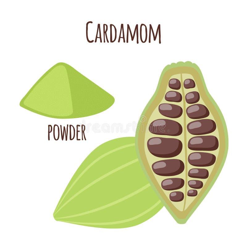 Kardamon pikantność dla jedzenia w kreskówki mieszkania stylu organiczny składnik ilustracji