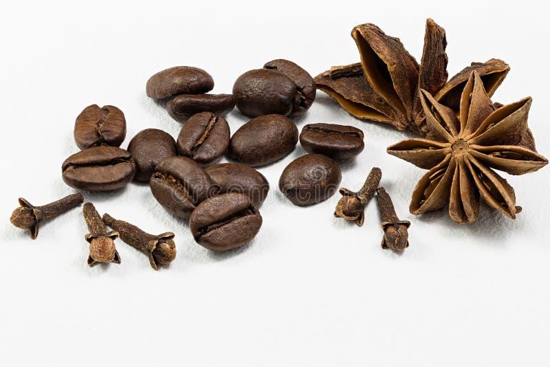 Kardemumma, kornkaffe och nejlika på vit bakgrund arkivbild